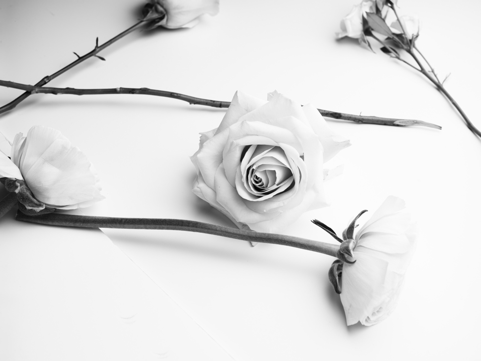 Chloé fleurs (c) PHILIPPE LACOMBE